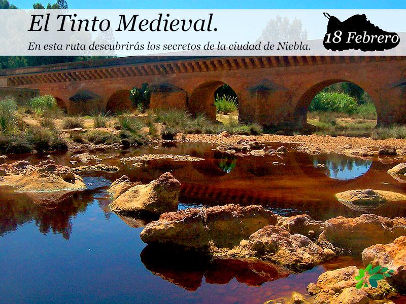 El Tinto Medieval |18 de Febrero