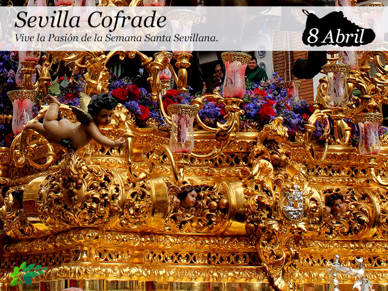 Sevilla Cofrade |8 Abril
