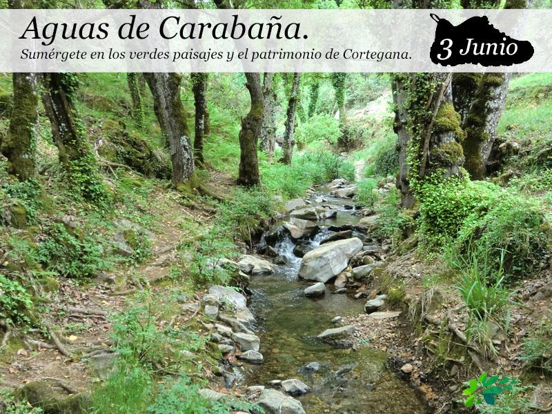 Aguas de Carabaña | 3 de Junio