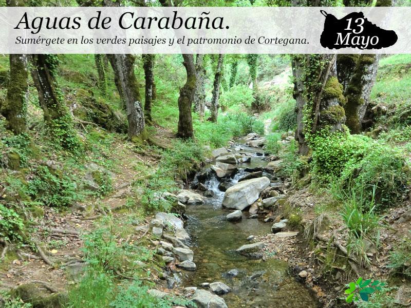 Aguas de Carabaña | 13 de mayo