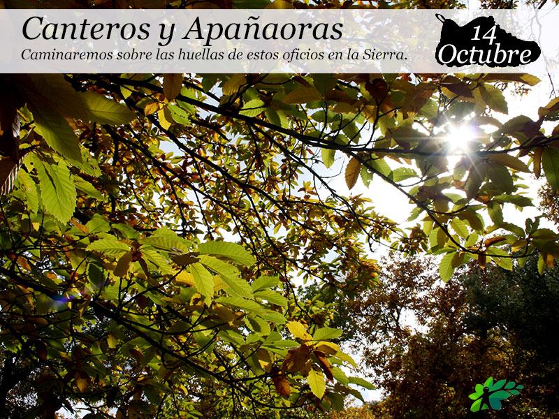 Canteros y Apañaoras | 14 de octubre.