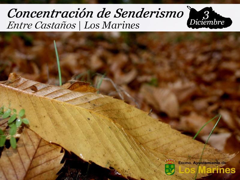 Concentración Senderista Entre Castaños | 3 de diciembre