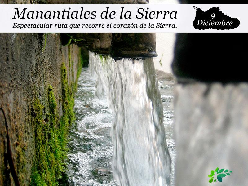 Manantiales de la Sierra | 9 de diciembre
