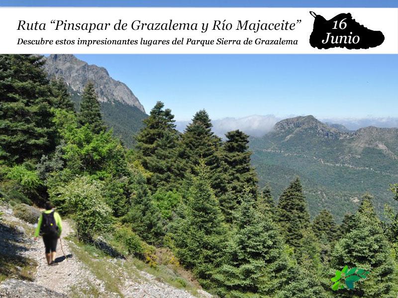Pinsapar de Grazalema y Río Majaceite | 16 de Junio