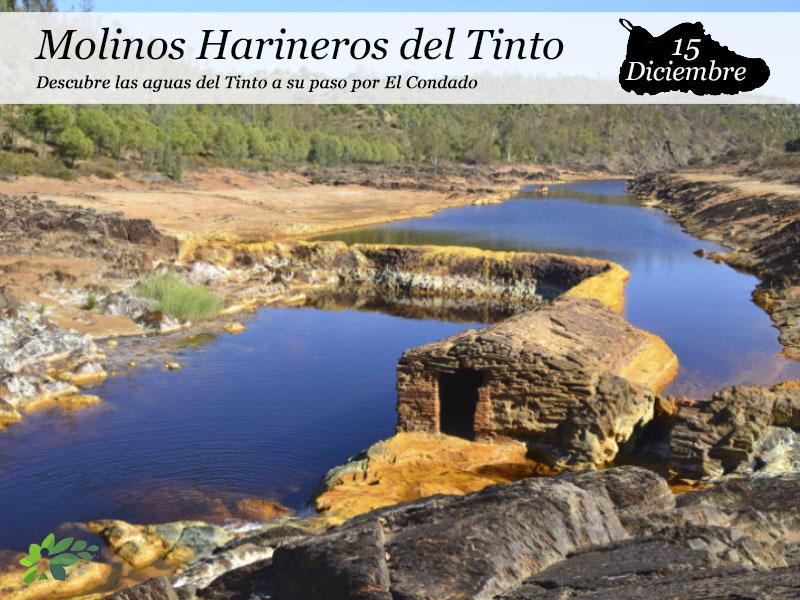 Molinos harineros del Tinto | Sábado 15 de Diciembre