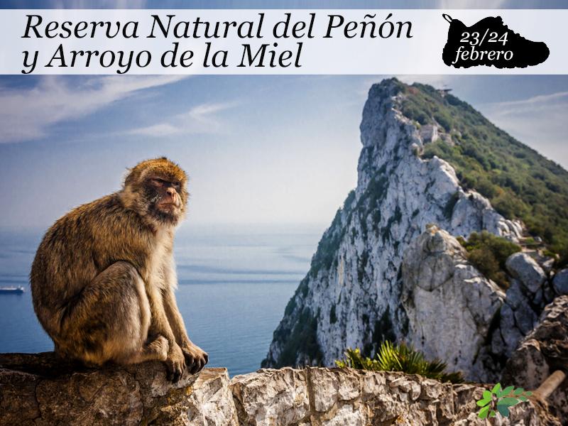 Reserva Natural del Peñón y Arroyo de la Miel | 23 y 24 de febrero