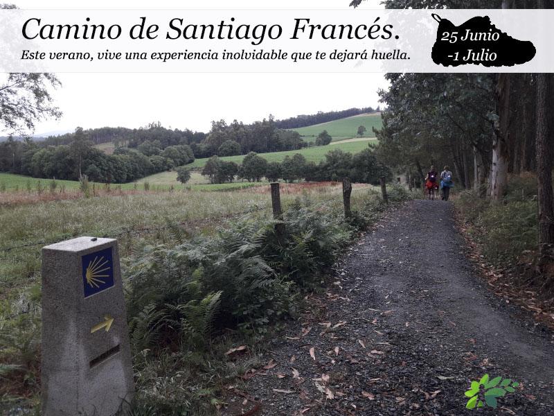 Camino de Santiago Francés| del 25 de Junio al 1 de Julio