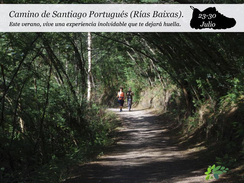 Camino de Santiago Portugués (Rías Baixas)| del 23 al 30 de Julio