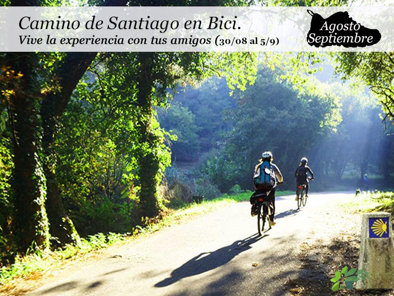Camino de Santiago Francés en Bici| del 30 de agosto al 5 de septiembre